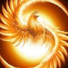 Пользователь Phoenix