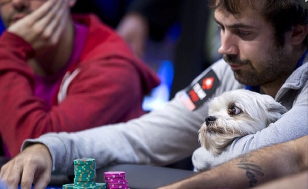 Jason Mercier at WSOP