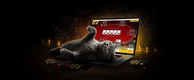 Lockdown Series на PokerMatch