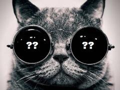 """Кот в мешке или Великий покер и """"не""""Великий игрок?"""