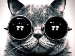 """Кот в мешке или Великий покер и """"не""""Великий игрок? (v1.1)"""