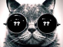 """Кот в мешке или Великий покер и """"не""""Великий игрок? (v1.2)"""