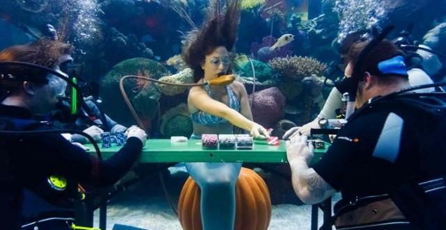 Покерный турнир в аквариуме