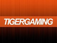 Tiger Gaming конфисковал у белоруса весь банкролл
