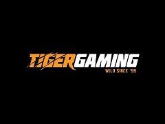 Tigergaming запустил 4 акции для игроков за кэш-столами