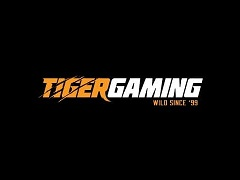 Tiger Gaming launched 4 promotions for cash players