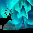 Выиграйте путевку в Лапландию от PokerStars