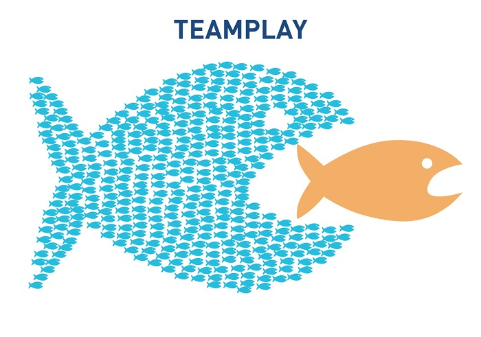Team Play 2019