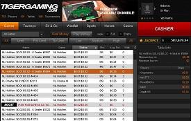 Скріншот Tiger Gaming