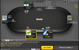 Bwin Poker screenshot