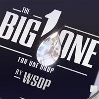 Мнение покеристов про участников 1 000 000€ Big One For One Drop