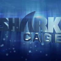 Shark Cage: Футболист, боец MMA и шахматистка (+Видео)