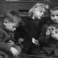 Обнаружено казино на территории детского лагеря
