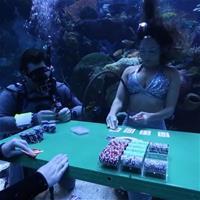Подводный покер