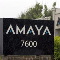 Amaya будет требовать деньги у Шейнберга