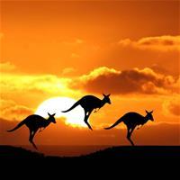 В Австралии приходит конец онлайн-покеру